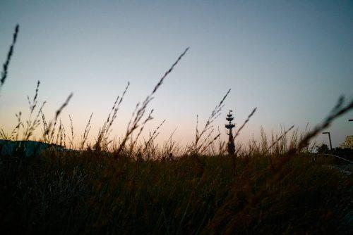 letniy vecher dsc5454 500x334 - Летний вечер DSC5454  ©Александр Олевский