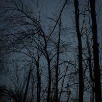 Синие квадраты ©Александр Олевский